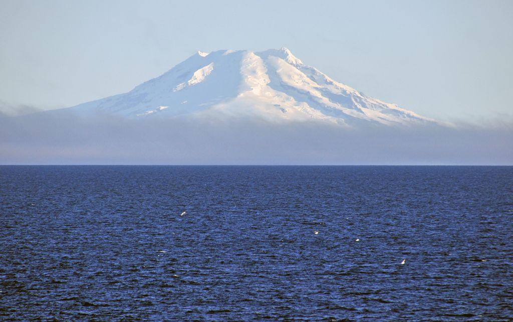 tripreport mit der ms delphin nach den f r er inseln island spitzbergen und norwegen. Black Bedroom Furniture Sets. Home Design Ideas